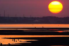 Sunset Solent Haze (fstop186) Tags: sunset solent haze silhouette sea water lowtide landscape