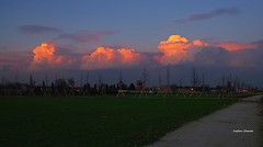 Aldilà dei sogni (stefano.chiarato) Tags: tramonto sunset nuvole clouds cielo sky campagna novamilanese lombardia italy sera pentaxart pentax pentaxlife pentaxk70