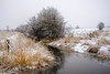 coloured by winter (Port View) Tags: fujixe3 portwilliams novascotia ns canada cans2s 2018 winter snow snowstrom snowing creek stream drainage water trees fence color colour landscape