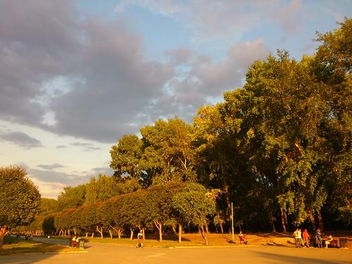 Вид на аллею у Дворца спорта ©  ayampolsky