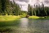 grüner See (Harry Pammer) Tags: grüner see green lake austria österreich steiermark styria tragoess water wasser natur nature forest trees wald baum bäume landschaft landscape