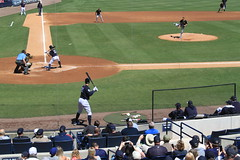 IMG_3277 (Joseph Brent) Tags: yankees spring training tampa florida steinbrenner field aaron judge
