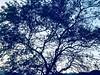 Inframundo Maya 🌳🔥 #Maya #Inframundo #skye #Anotherperspective #perfect #landscape #water #colorfull #landscape #Gautemala #Chiquimula (ismerimachorro2001) Tags: maya inframundo skye anotherperspective perfect landscape water colorfull gautemala chiquimula