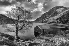 The Boathouse (g3az66) Tags: theboathouse llynogwen snowdonia ogwenvalley wales silverefexpro2