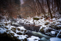 Cold Snap (Augmented Reality Images (Getty Contributor)) Tags: woodland leaves perthshire landscape winter river forest water nisifilters scotland longexposure canon trees countryside snow comrie unitedkingdom gb