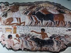 P3100388.jpg (marius.vochin) Tags: ancient museum egipt london britishmuseum pictures indoor england unitedkingdom gb