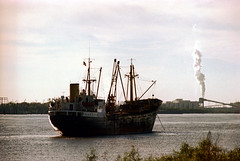 1a-459 (ndpa / s. lundeen, archivist) Tags: nick dewolf nickdewolf photographbynickdewolf 1978 1970s color 35mm film 1a reel1a louisiana southernlouisiana neworleans water river mississippi mississippiriver ship anchored atanchor flag smokestack smoke