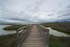 Foot Bridge (tourtrophy) Tags: alviso footbridge bridge marshlands chicagomarshlands sonya7r2 sonyvariotessartfe1635mmf4osszeisslens marsh donedwardsnationalwildliferefuge southbay