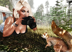 Nature Photography (dumeric_asp) Tags: catwa bento sl secondlife nature natural avatar mesh animals squirrel photographer
