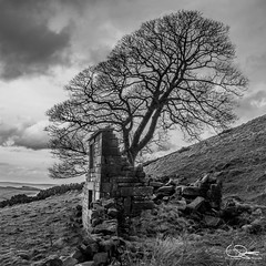 peak district april 2018-9 (liamsimpson) Tags: peak district national park countryside hills rolling abandoned ruin ruins ruined industrial manor house river water weir church sky sunset blue cloud grey overcast stormy moody tree wood woods forest stone brick sheep farm farmland wall england derbyshire staffordshire chatsworth roaches barn hut building pump