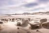 North Sea Island Juist - Sandsculptures #1 (nigel_xf) Tags: juist northsea island insel nordsee sand sandskulpturen sandsculptures sculptures skulpturen strand beach wind storm sturm naturschauspiel nature natur einzigartig amazing nikon d750 nigel nigelxf vsfototeam