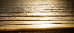 Strandläufer (Ralf Westhues) Tags: strand spaziergang wellen waves vagues beach plage sunset coucherdusoleil sonnenuntergang sand wasser ozean meer ocean océan