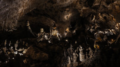 L1100577 (iAryeh) Tags: carlsbadcavernsnationalpark carlsbadcaverns carlsbad caverns cave mountain desert underground newmexico nm nationalpark nps nps101 leica