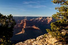 Grand Canyon-5 (amylippman1) Tags: 2016 canyon grandcanyon southrim southwest
