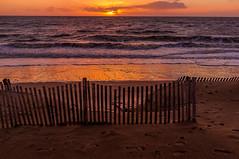 Girondines et le coucher de soleil de Châtel (Fabrice Denis Photography) Tags: seascapephotography france chatelaillonplage charentemaritime sunsetphotographer coastalphotography frontdemer girondine sunsetphotos sea nouvelleaquitaine beachphotography plage ocean sunsetpics coastal oceanphotography sunsetphotography sunset seascapephotographer seascapes seascapephotos beach châtelaillonplage fr