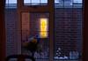 Art Deco Glow (in the snow) (btyreman) Tags: carlzeiss planart1450 50mm zeiss ze canon eos 5d sashwindow stainedglass artdeco style 1930s snow weather uk bluehour storm glow light yellow blue warm cold twilight t planart f22 150 iso1600 bokeh glass reflections winter planar5014ze spring
