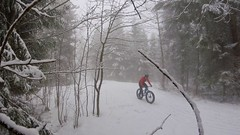 Just The Right Amount (29in.CH) Tags: winter snow fog fatbike ride 18032018 trail