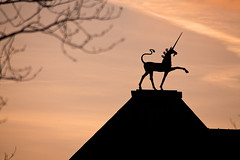 Kicking up a storm (archidave) Tags: bristol architecture city hall roof unicorn silhouette sunset