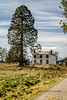 auld building (billdsym) Tags: building trees path shadows sky