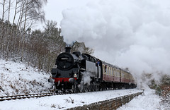 80072 - Northwood Lane (Andrew Edkins) Tags: 80072 br standardtank northwoodlane bewdley severnvalleyrailway snow steamtrain steamgala worcestershire england uksteam 2018 march winter preservedrailway railwayphotography cold light frozen ice geotagged canon travel trip passengerservice tankengine trees sky clouds overcast