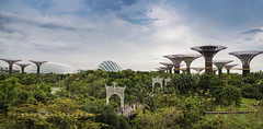 SINGAPORE/gardens by the bay (inigolai) Tags: gardensbythebay singapore asia landscape landmark paisaje photomerge photostich color daylight colors sky green gardens vegetation travel tourism southeastasia panorama panoramic nature outdoor naturepark park citypark southgarden