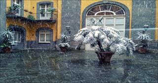 oggi nevica a NAPOLI