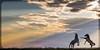 Horse sunset-1 (Jami Bollschweiler Photography) Tags: wild horse sunset rearing stallions
