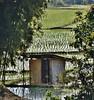 Du riz, SVP. (France-♥) Tags: 1771 riziere thailande vert shed cabane champs rice