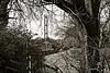 Bridge Tower Monochrome (brianarchie65) Tags: hessle humberbridge humberbridgetowers railwaylines train a63 trees bridge monochrome blackandwhite blackandwhitephotos blackandwhitephoto unlimitedphotos ngc flickrunofficial flickruk flickr flickrcentral ukflickr cars traffic canoneos600d geotagged brianarchie65 eastyorkshire yorkshire eastridingofyorkshire