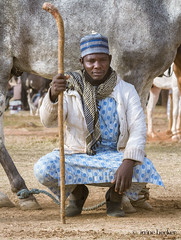 Man with his Horse (Irene Becker) Tags: arewa durbar kaduna kadunastate murtalamuhammedsquare nigeria northnigeria westafrica celebration centenary northernnigeria people photograph outdoors realpeople developingcountries africanethnicity cultural day traveldestination street communication beauty pride hausa timetravel festival parade