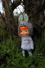 New Animal Hats!! (Isa Mira) Tags: holala doll vinyl dafnery animal hats cute orange hair