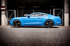 Blue power (mateusz.jedrak1) Tags: mustang ford car wroclaw blue