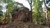 Prasat Bos Ream Temple, Sambor Prei Kuk (Travolution360) Tags: cambodia sambor prei kuk prasat bos ream temple ancient ruins khmer ways angkor forest nature history kampong thom forgotten travel