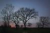 Blue Hour (oskaybatur) Tags: sunrise oskaybatur 2018 tree pentaxkr sigma1770 april morning türkiye turkey turkei pentaxart justpentax landscape ontheroad