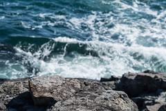 Île des Monts Déserts (Mylene Gauthier) Tags: 2018 atlantique barharbor bleu couleur eau maine mars mylenegauthier nikond7100 océan paletteprintanière parcnationaldacadia paysagepolychrome plandeau printemps schoonerheadoverlook étatsunis îledesmontsdéserts