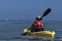 Monterey Bay Ocean Kayaking (Presidio of Monterey: DLIFLC & USAG) Tags: montereybaymarinesanctuary montereybay montereykayaking oceankayaking presidioofmonterey dli defenselanguageinstitute fmwr imcom armymwr outdoorrecreation adventure