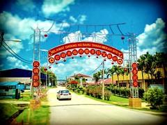 71960 Port Dickson, Negeri Sembilan http://maps.google.com/?q=Unnamed+Road%2C+71960+Port+Dickson%2C+Negeri+Sembilan&ftid=0x31cdebab89b87545:0xd1340f9cf714e40&hl=en&gl=gb #tree #trip #travel #holiday #traveling #tree #Asian #Malaysia #negerisembilan #holid