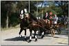 De vint-i-un botons, Tres Tombs 2018, Bigues (el Vallès Oriental) (Jesús Cano Sánchez) Tags: elsenyordelsbertins canon eos20d tamron 18200 catalunya cataluña catalonia barcelonaprovincia valles vallesoriental lavalldeltenes cinglesdeberti biguesiriells bigues trestombs trestombs2018 cavall caballo horse