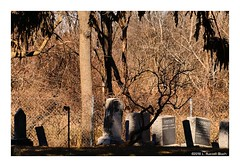 CrookedTree (TooLoose-LeTrek) Tags: cemetery headstonegrave shadow death