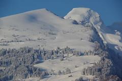 IMGP3945 Hurst und Alvier (Alvier) Tags: schweiz switzerland ostschweiz alpenrheintal buchs alviergebiet winter schnee spätwinter