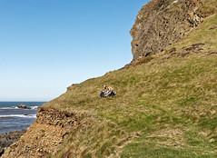 Cliff Face (northdevonfocus) Tags: cliff northdevoncoast southwestcoastpath rocks beach hartlandheritagecoast hartlandpeninsula