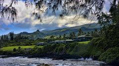 Magic coast (Miradortigre) Tags: hana maui hawai island isla pacific ocean oceano montañas verdes green tropical forest pacifico