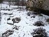 April snow (ladybugdiscovery) Tags: snow melting garden cold spring