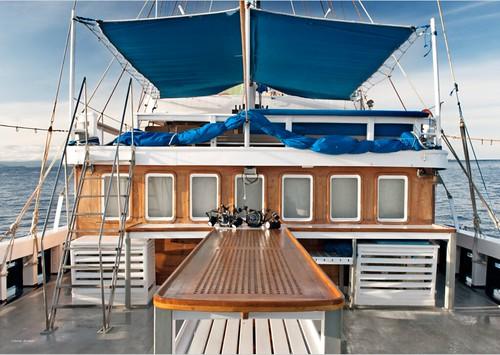 MSY Seahorse - Deck