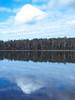 Lone Traveller (Alfredo Esing) Tags: cloud nimbus sky blue tree treeline water reflection lake still mirror morning outdoors nature omd olympus em5ii 1250mm
