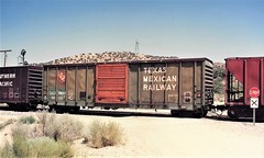 Texas Mexican boxcar -- patched for TASD -- at Cajon Summit in 1992 (Tangled Bank) Tags: train railwa railroad railways old classic heritage vintage north american fallen flag 1990s 90s rolling stock freight cars equipment texas mexican boxcar patched for tasd cajon summit 1992 tm srr