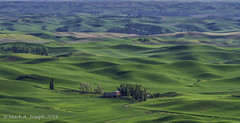 IMG_7060-2 (roastnbrew) Tags: palouse steptoe butte