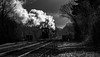 Pick-up goods (Peter Leigh50) Tags: great gcr gala central railway railroad steam train blackandwhite black white bw