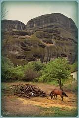 •Hambre ♣ Πείνα• (jose luis naussa (+2,8 millones . )) Tags: μετέωρα paisajes ελλάδα monasterios kalambaka