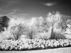_3160206 (Hyperfocalist) Tags: bournemouth infrared winter dorset beach coast shore sunny